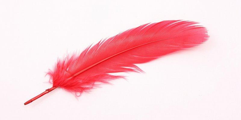 羽根 募金 赤い